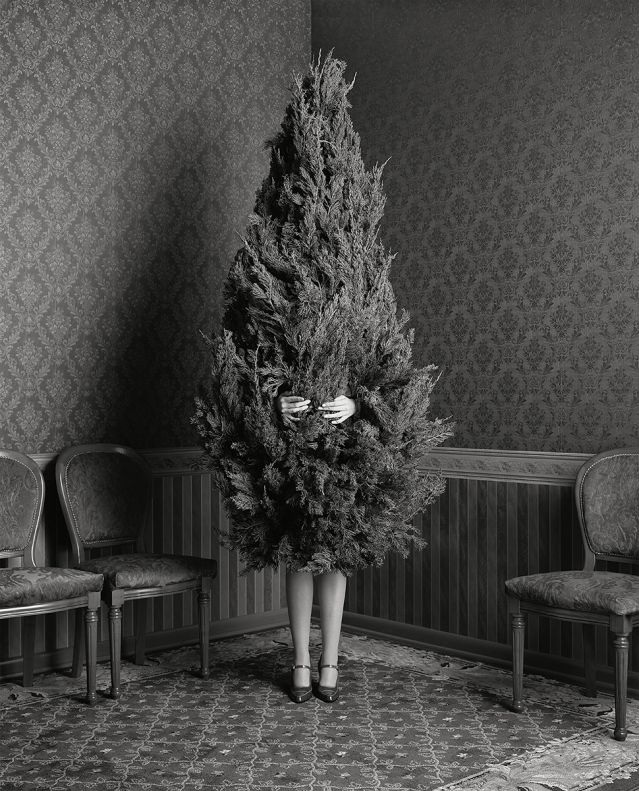 Geof Kern/Trunk Archive, used with permission