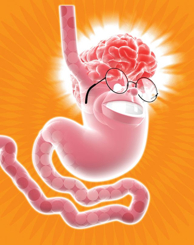 Illustration: Stomach w/ a brain and glasses on