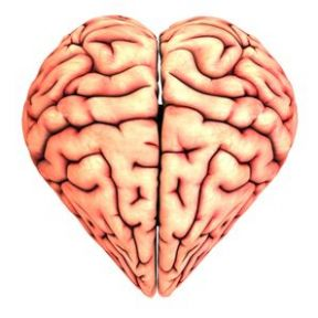 Can Your Brain Get Obese With Love?