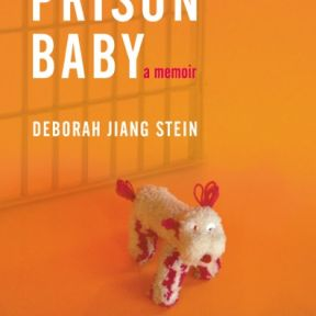 Babies in Prison, What Comes Next?